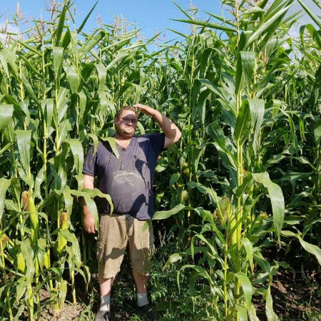 Danny our crop manager in a field of corn
