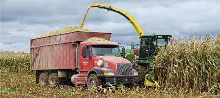 Corn silage harvest October 2017 Mapleton's Organic - Harvester and 1 Truck