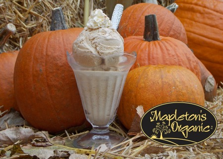 Mapleton's Organic Pumpkin Ice Cream