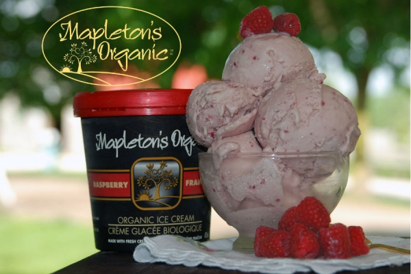 Mapleton's Organic Raspberry Ice Cream